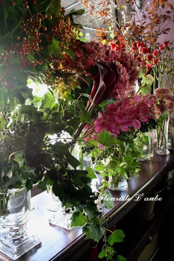 野ブドウ、灌木、カラー、コニカム、モカラ、セダム、アジサイ、ハイビスカスの実、バラの実、紅スモモ