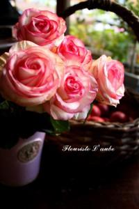 rose'ヴェラヴィータ'