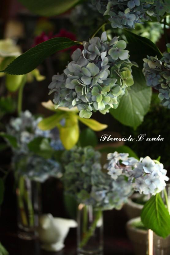 Fleuriste L'aube